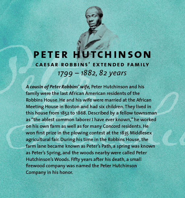 Peter Hutchinson